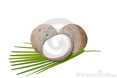 Kokosnötter med det gröna bladet på vit bakgrund