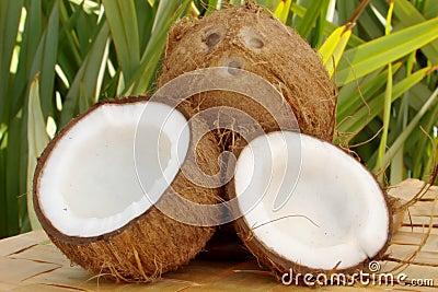 Kokosnüsse