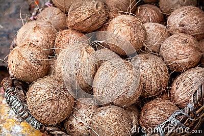 Kokosnüsse am indischen Markt