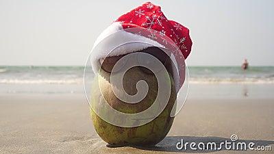 Kokosnoot op het zeestrand in een hoed van Santa Claus viert Kerstmis of Nieuwjaar stock video