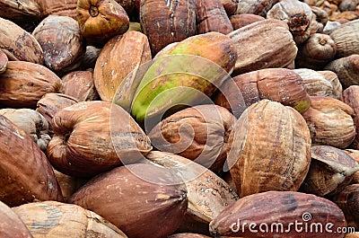 Kokosnoten, met externe huid