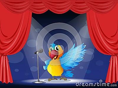 Kolorowy papuzi spełnianie na scenie