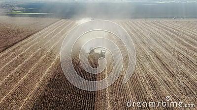 Kombinieren Sie Erntemaschinen, die frisch geernteten Weizen zum Transport auf Traktoranhänger übertragen, in Zeitlupe stock footage
