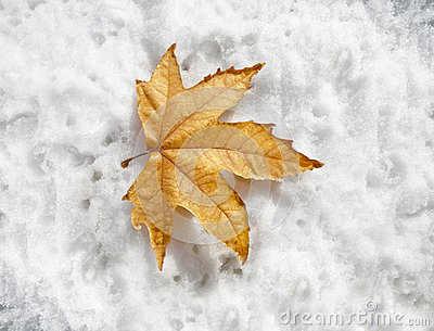 Kommande vinter