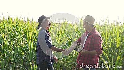 Konceptet för smart lantbruk för teamarbete, långsam rörelse. Två män mot två jordbrukare segrar och skakar hand mot lagarb arkivfilmer