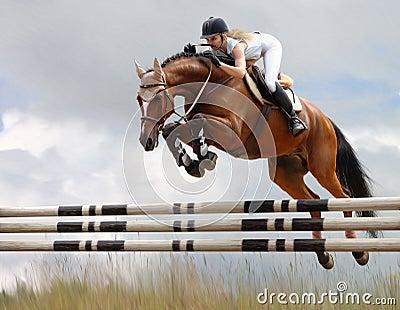 Konia equestrian jumping