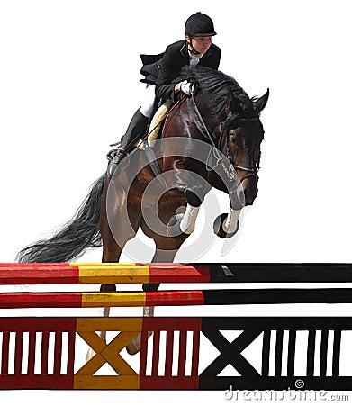 Konia equestriat jumping