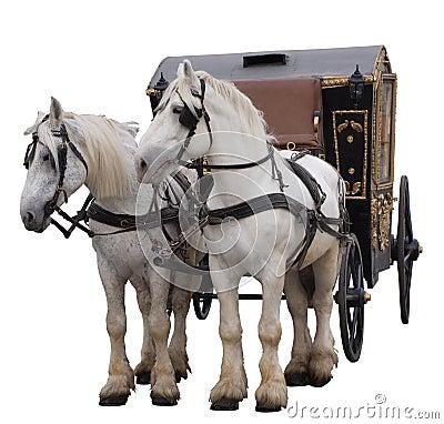 Konie dwa