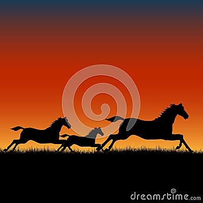 Konie target926_1_ zmierzch dzikiego