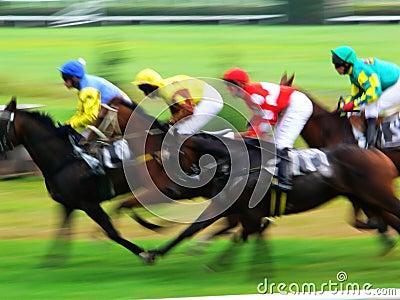 Koniec wyścigu końska