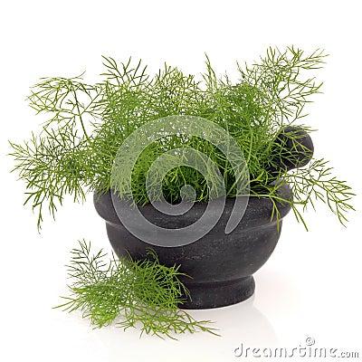Koperkowy ziele