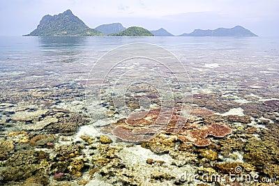Korallenriff und Inseln