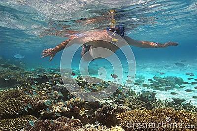 Koralowej Maldives rafy snokelling turysta