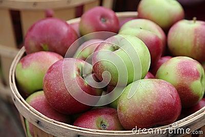 Korb der Äpfel