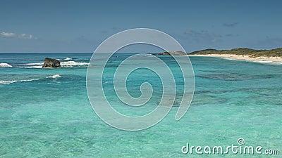 Kota Wyspy Linia brzegowa