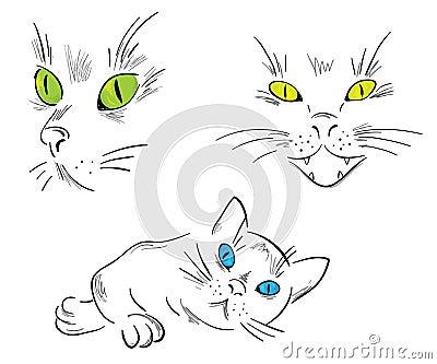 Koty inkasowi