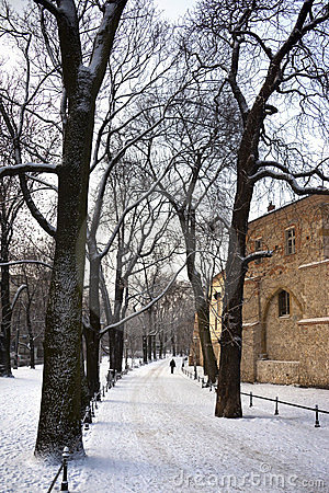 Krakow - The Planty - Winter - Poland