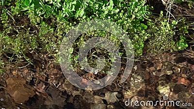 Kristalhelder water in een bergketen stock footage