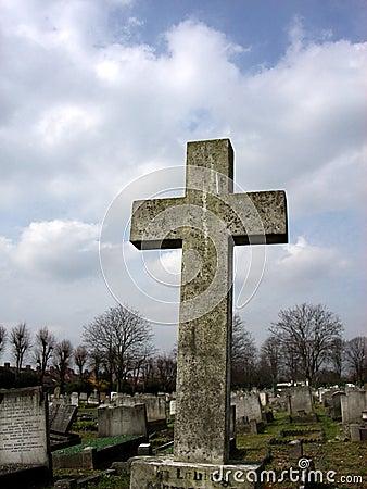 Krzyż 3