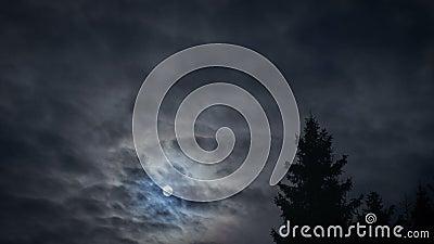 Księżyc na nocnym niebie zdjęcie wideo