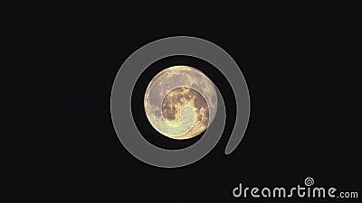 Księżyc W Pełni chodzenie w nocy zbiory wideo