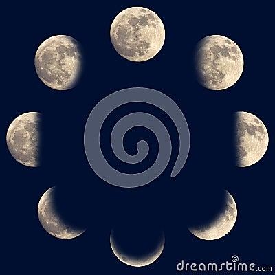 Księżyc fazy