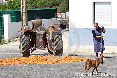 Kukurydzana szlifierska tradycyjna wioska Fotografia Editorial