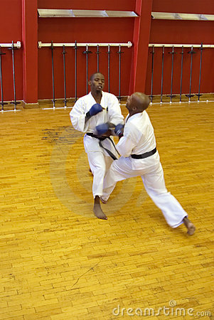 Kumite karate fight