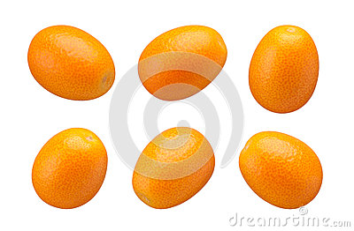 Kumquats isolated