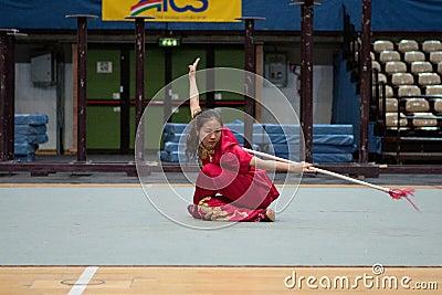 Kung Fu Heroes 2010 Italian Tour Editorial Stock Image