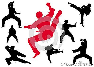 Kungfu van de karate