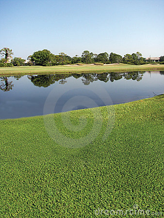Kurs golfa