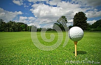 Kursowy golf