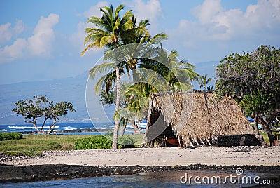 Kust van het Eiland van Hawaï de Grote