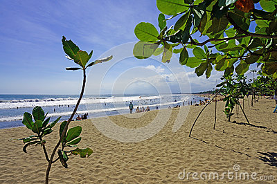 Kuta Beach behind green leaves