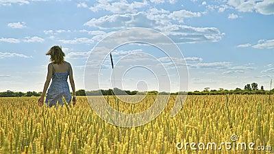 Kvinna som bort går i åkerbrukt fält ensamt begrepp lager videofilmer