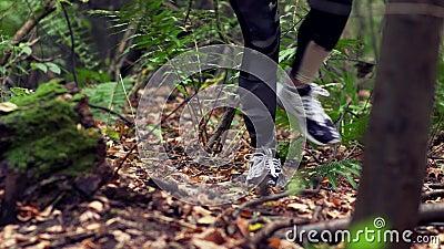 Kvinnan gör hans väg i höstskog stock video