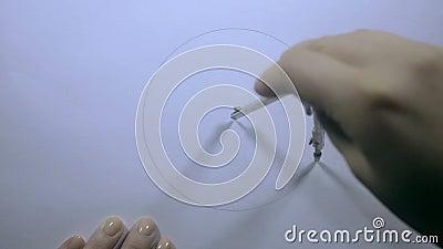 Kvinnlig handattraktion cirkeln med avdelarna stock video