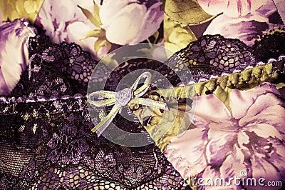 Kvinnlig lacy underclothesbakgrund
