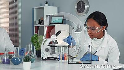 Kvinnliga forskare i skyddsglasögon som ger experiment med möss och sedan visar sin förvåning arkivfilmer