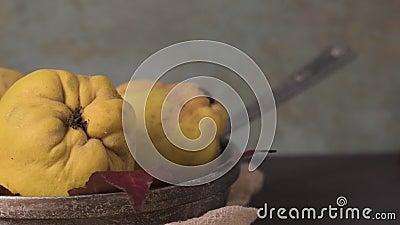 Kvitten bär frukt närbilden arkivfilmer