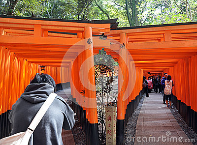 KYOTO, JAPAN - OCT 23 2012: A tourist walks through torii gates Editorial Photography