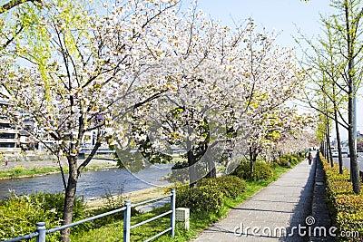 Kyoto, Japan Street View