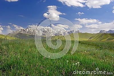 Kyrgyz pasture