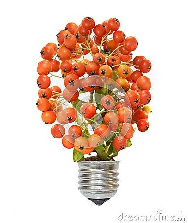 Lámpara ahorro de energía del eco
