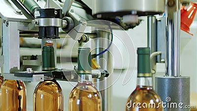 Línea automatizada completa del transportador en el lagar Cierra la botella por completo de vino almacen de video