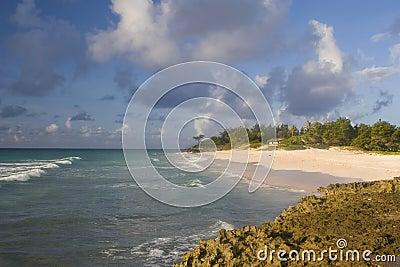 Línea de la playa de Barbados