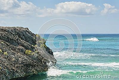 Línea de la playa de la isla del gato