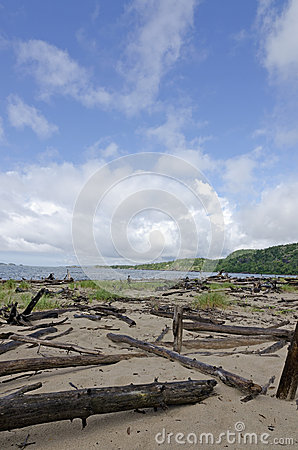Línea de la playa del superior de lago