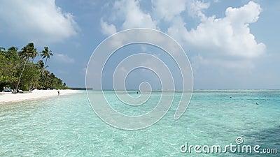 L'île des Maldives avec plage, palmiers et mer Océan Indien et ciel nuageux banque de vidéos
